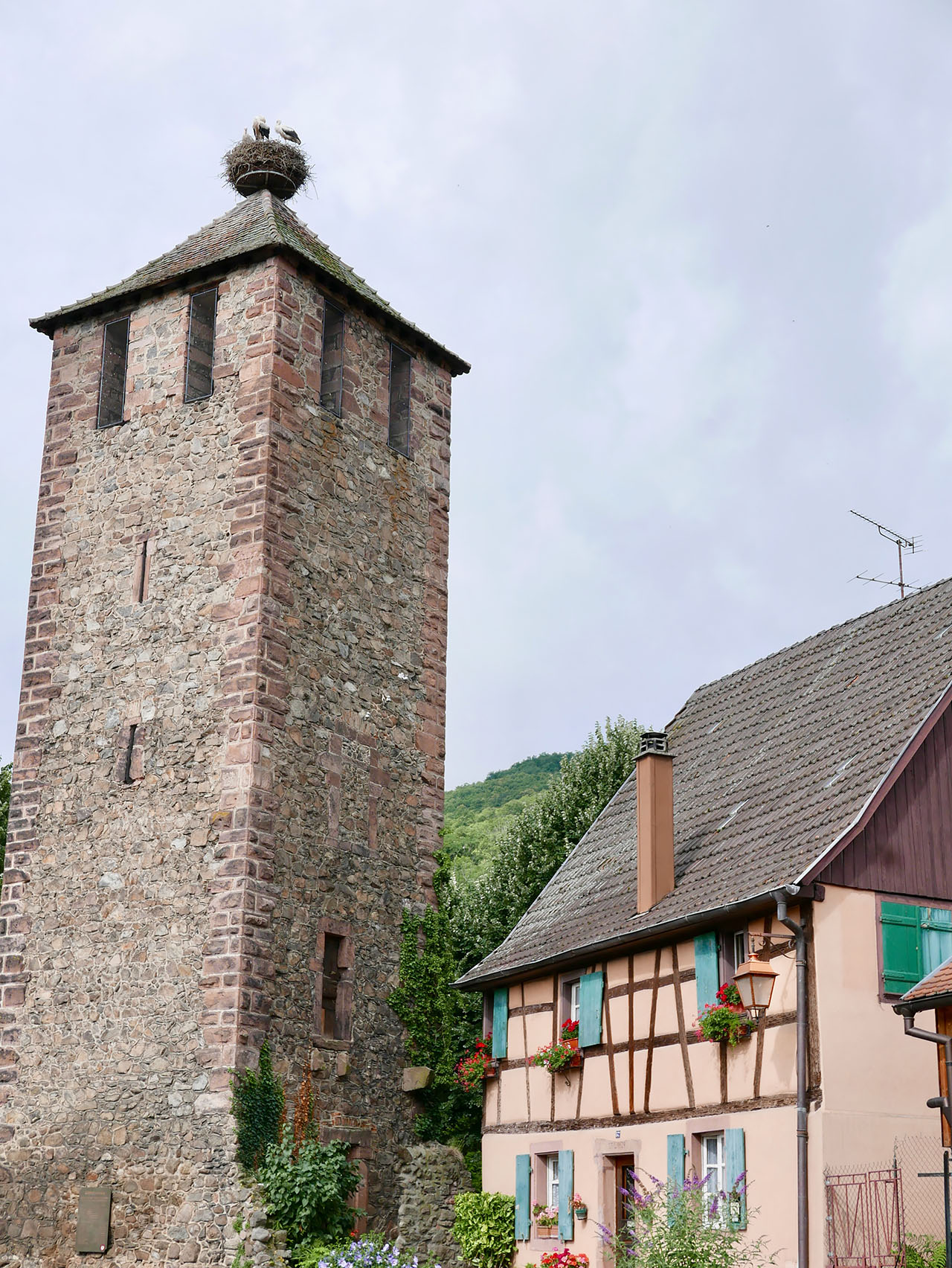 Cara Sharratt Travel - Kaysersberg, France
