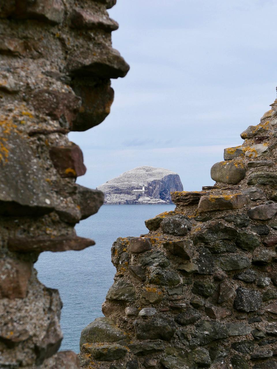 Cara Sharratt Travel - Bass Rock - Scotland, United Kingdom